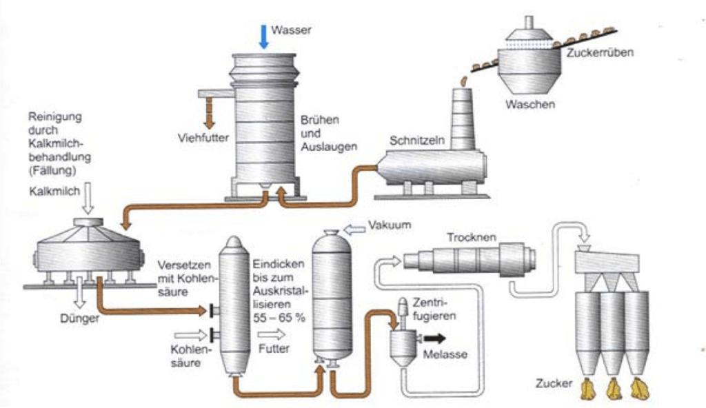 Bild: Industrielle Herstellung von Zucker