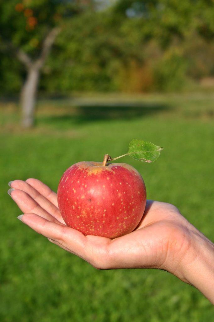 Bild: Roter Apfel liegt auf einer Hand