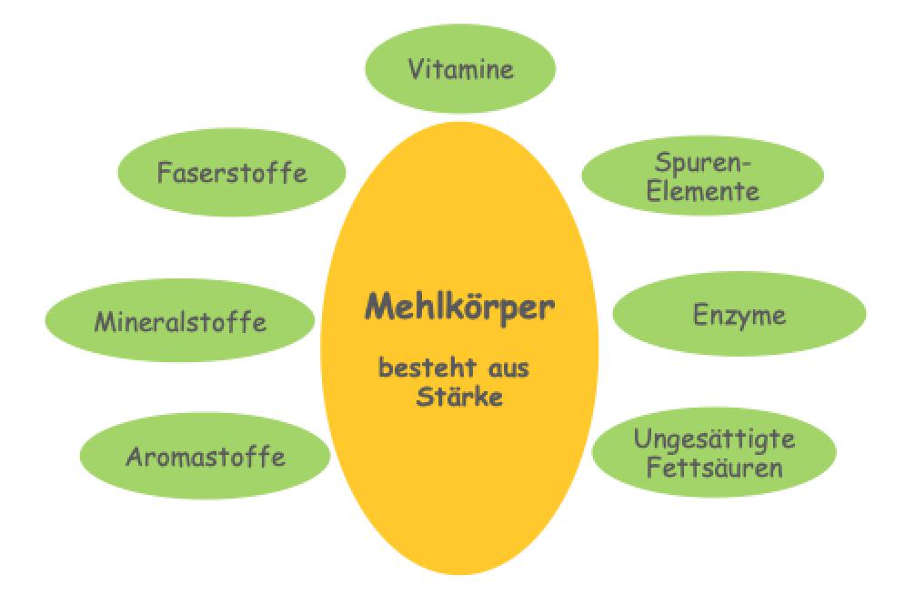 Bild: Vollkornmehl - Kohlenhydrate mit Vitalstoffen