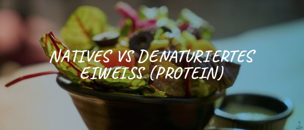 Bild: Natives vs denaturiertes Eiweiss (Protein)