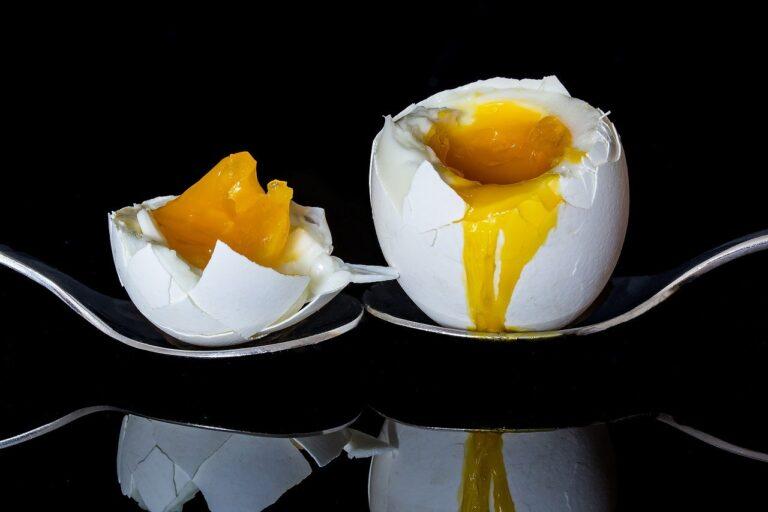 Bild: Tierisches Eiweiss - gekochtes Ei